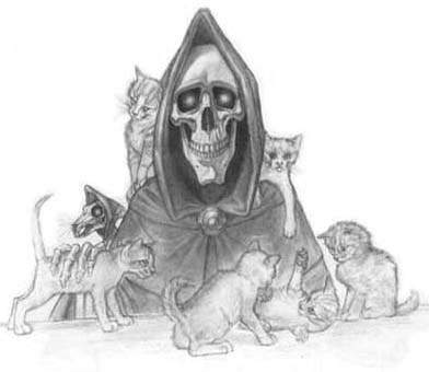 https://www.zemeplocha.info/images/chars/death.jpg